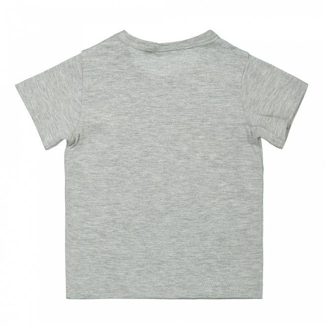 Dirkje jongens baby T-shirt grijs wasbeer