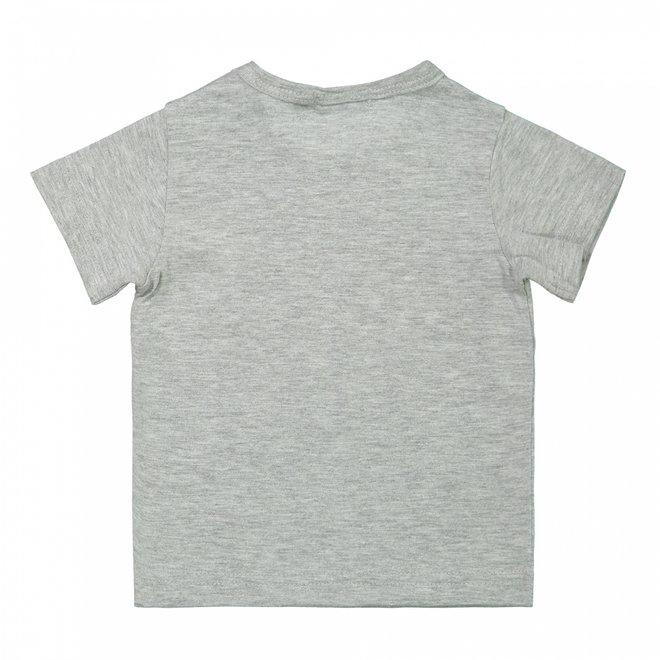 Dirkje Jungen Baby-T-Shirt grau Waschbär