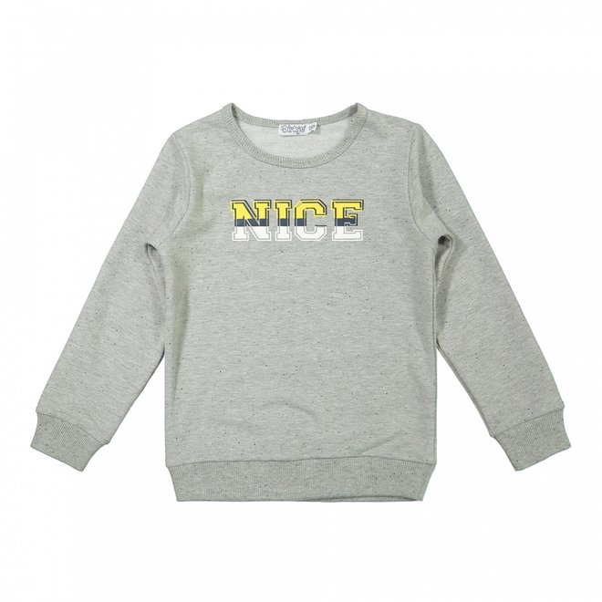Dirkje jongens sweater grijs
