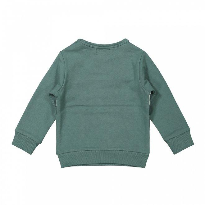 Dirkje Jungen Pullover Salbei grau grün