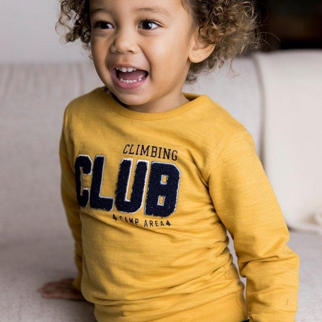 Dirkje boys jumper ochre yellow