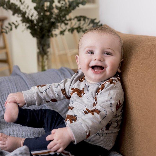 Dirkje jongens baby set trui en broek lichtgrijs tijger