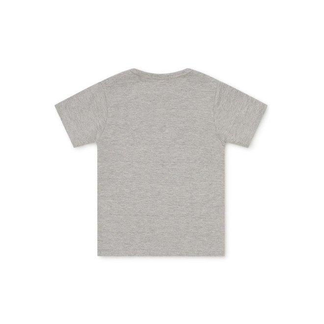 Dirkje Jungen Baby T-shirt grau