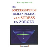 De Doeltreffende Behandelinge van Stress en Zorgen