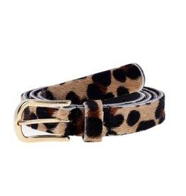 Leopard belt 2 cm gold