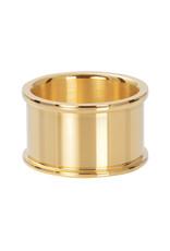 iXXXi ringen Basishuls goud 12 mm