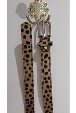 L'Avenue Cheetah riem