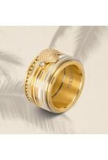 iXXXi ringen iXXXi vulring schelp symbool - 3 kleuren