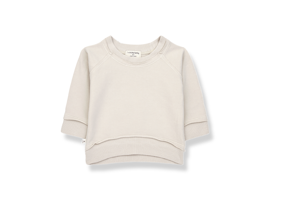 One More in the Family Tristan Sweatshirt Stone