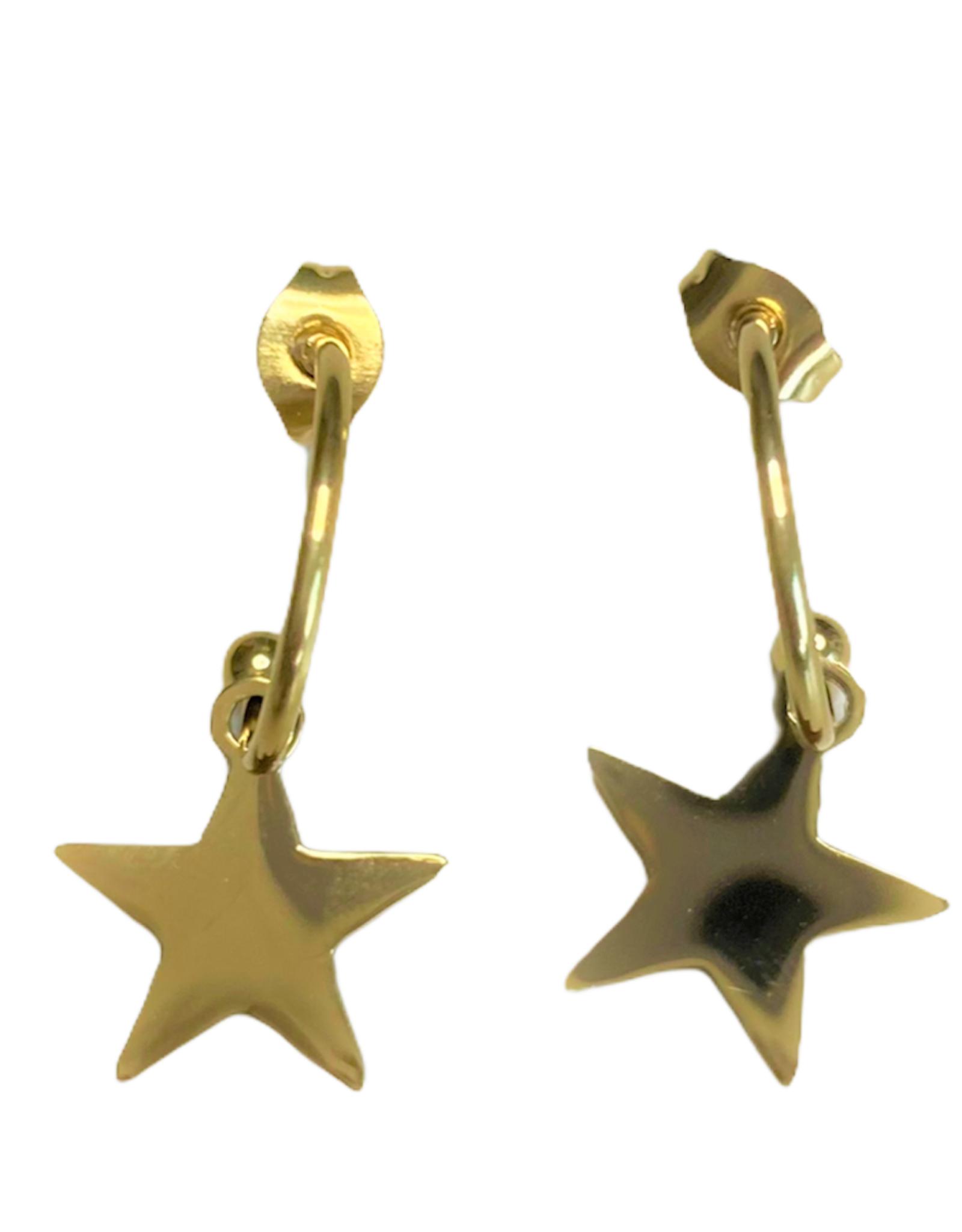 Oorbellen -  gold star