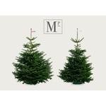 Kerstbomen gezaagd