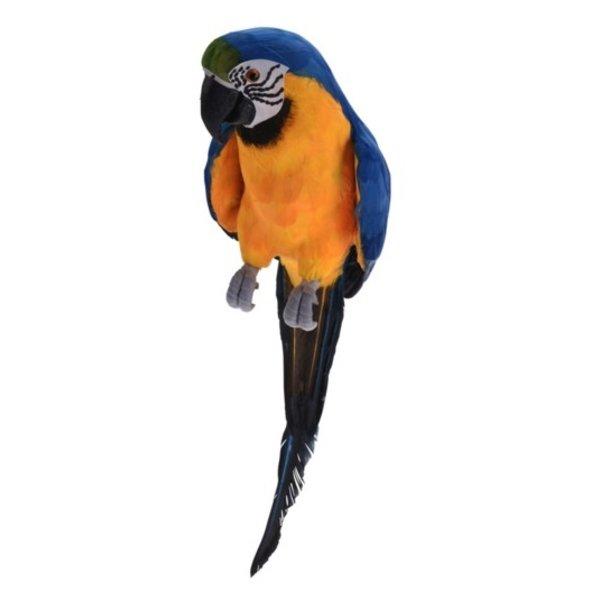 Papegaai blauw / geel