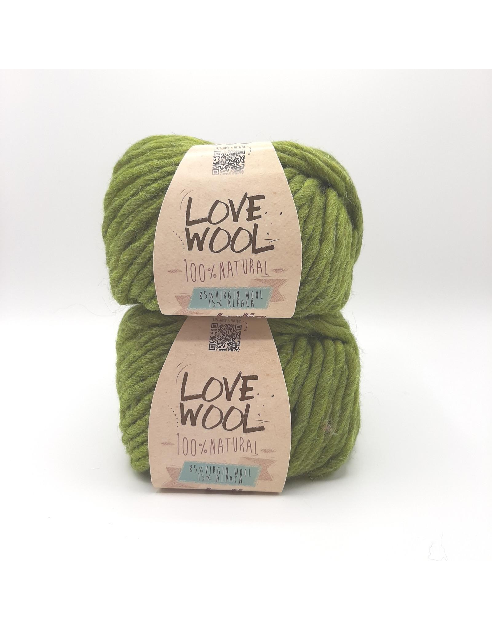 Katia Katia - Love Wool - 113 - Pistache - bundel 2 bollen x 100 gr.