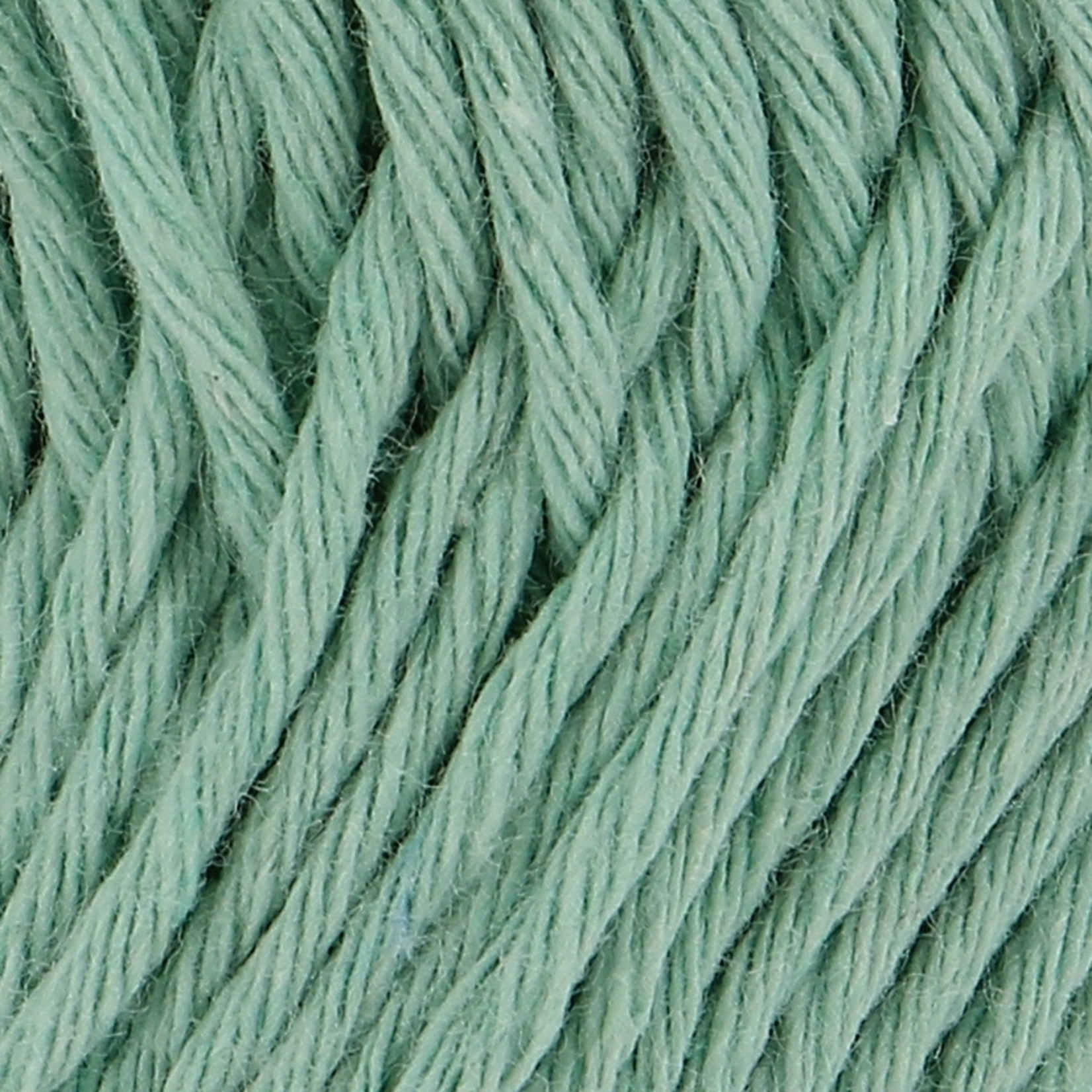 Hoooked Hoooked Soft Cotton DK Marseille Mint 50 gr. / 85 m.