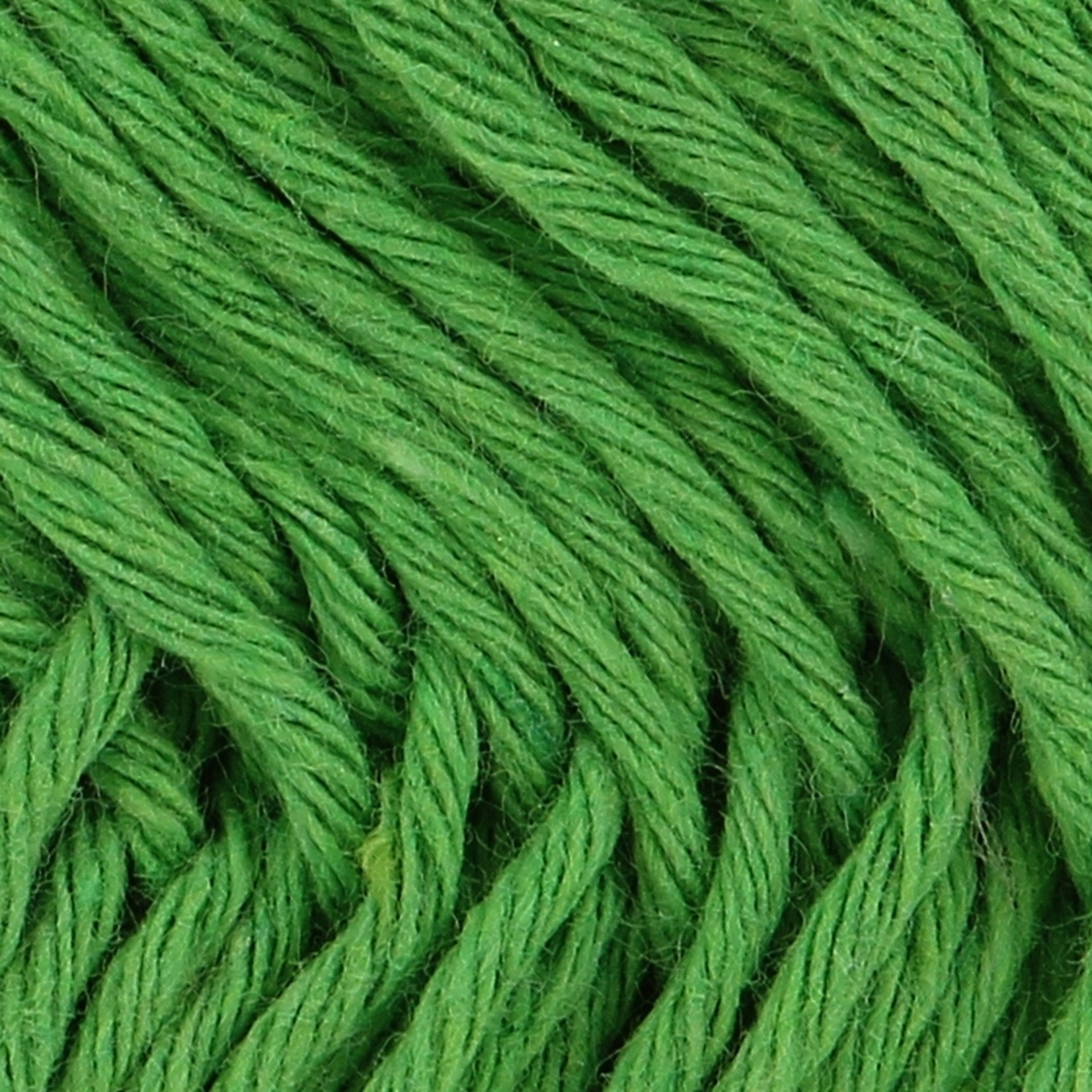Hoooked Hoooked Soft Cotton DK Singapore Green 50 gr. / 85 m.