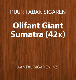 Olifant Giant Sumatra