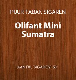 Olifant Mini Sumatra