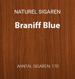 Braniff Blue