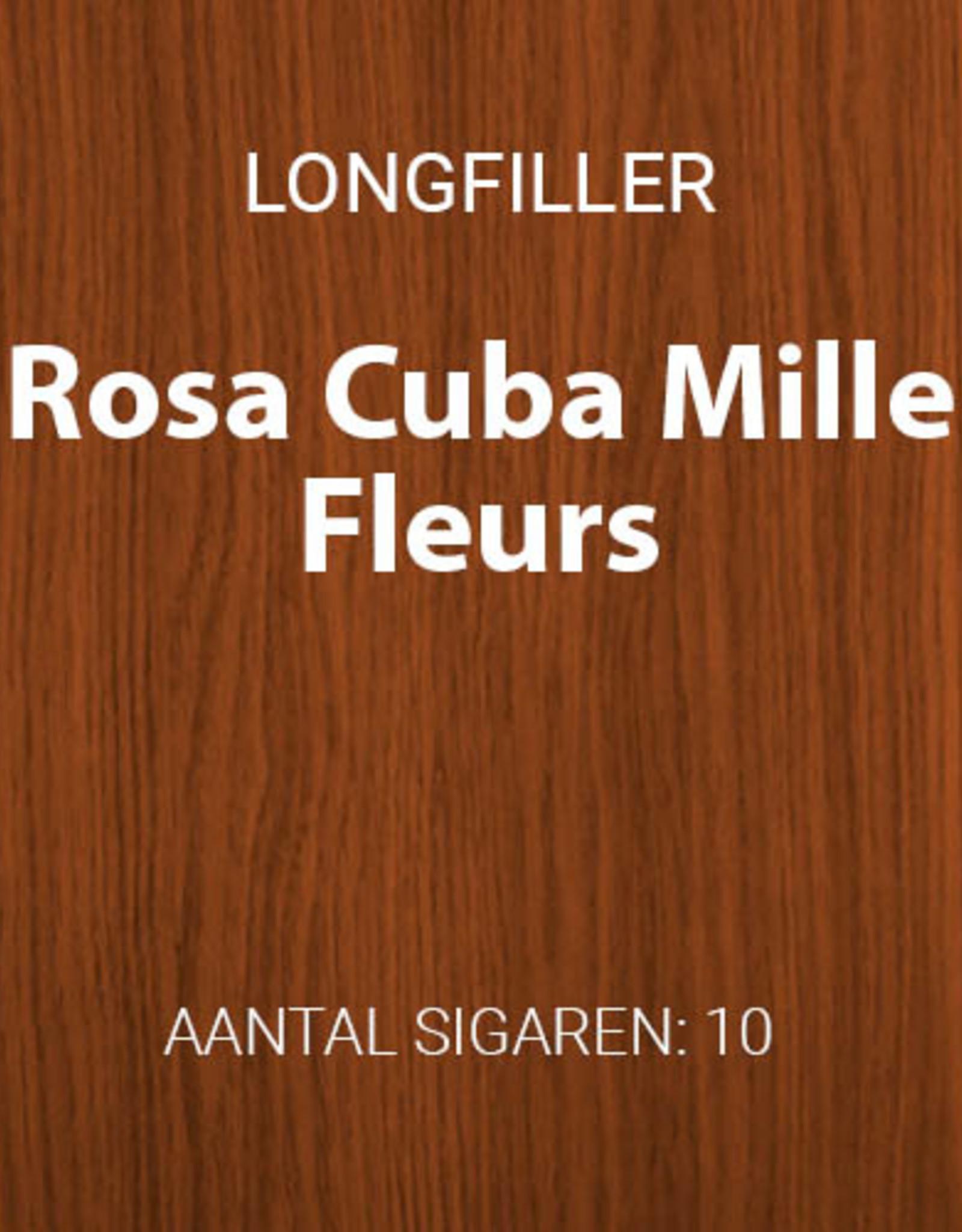 Rosa Cuba Millefleurs longfillers
