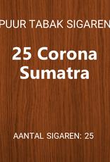 25 Corona Sumatra