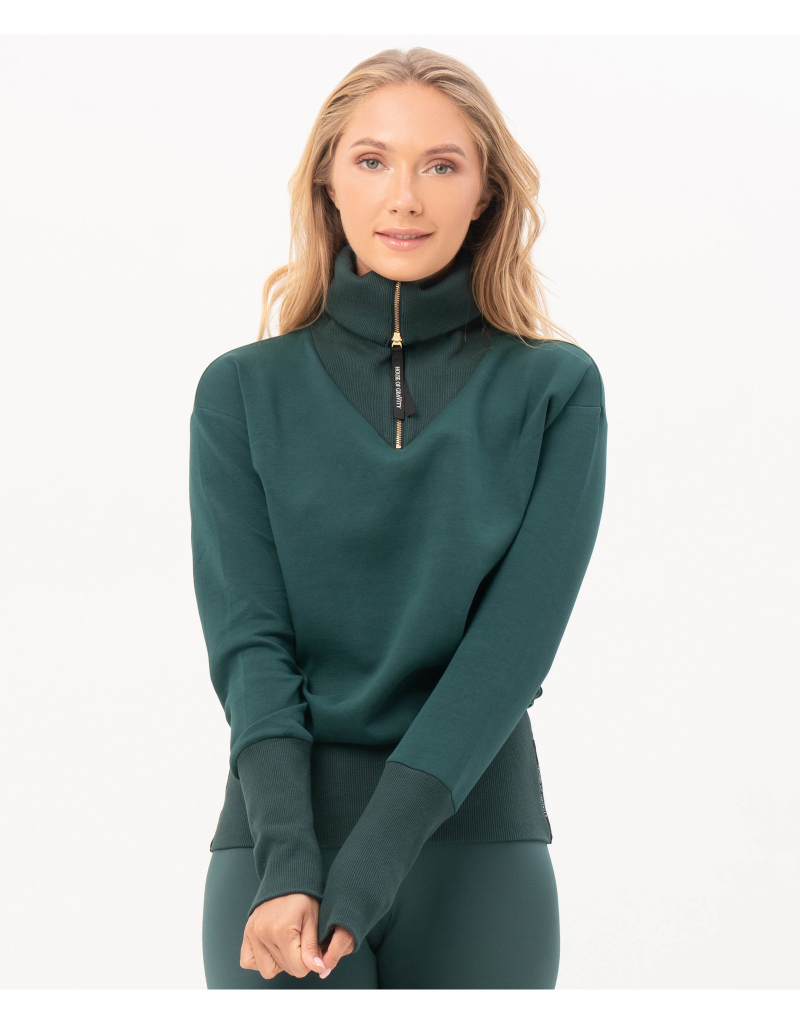 House of Gravity Sweater turtle