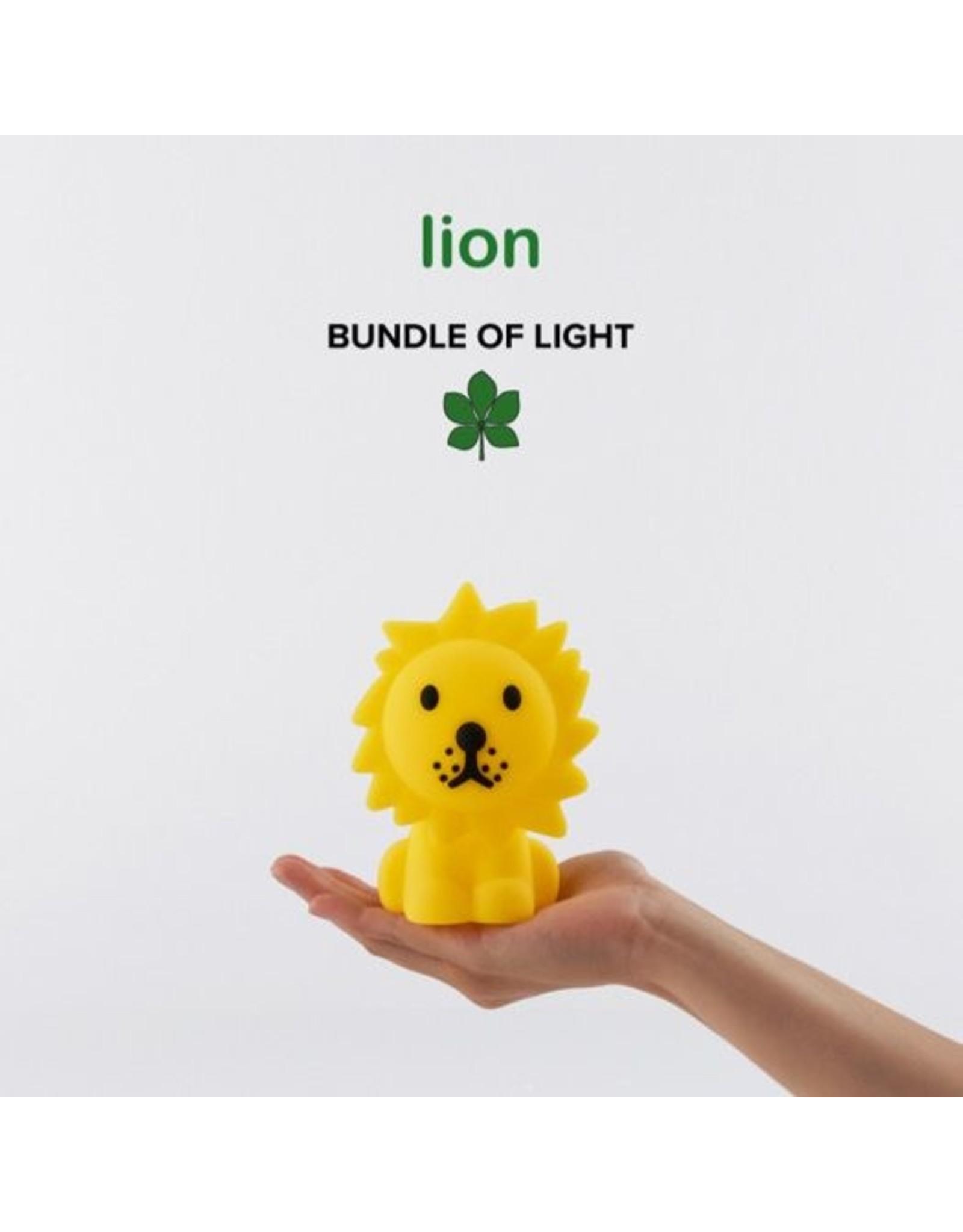 Nachtlampje Leeuw