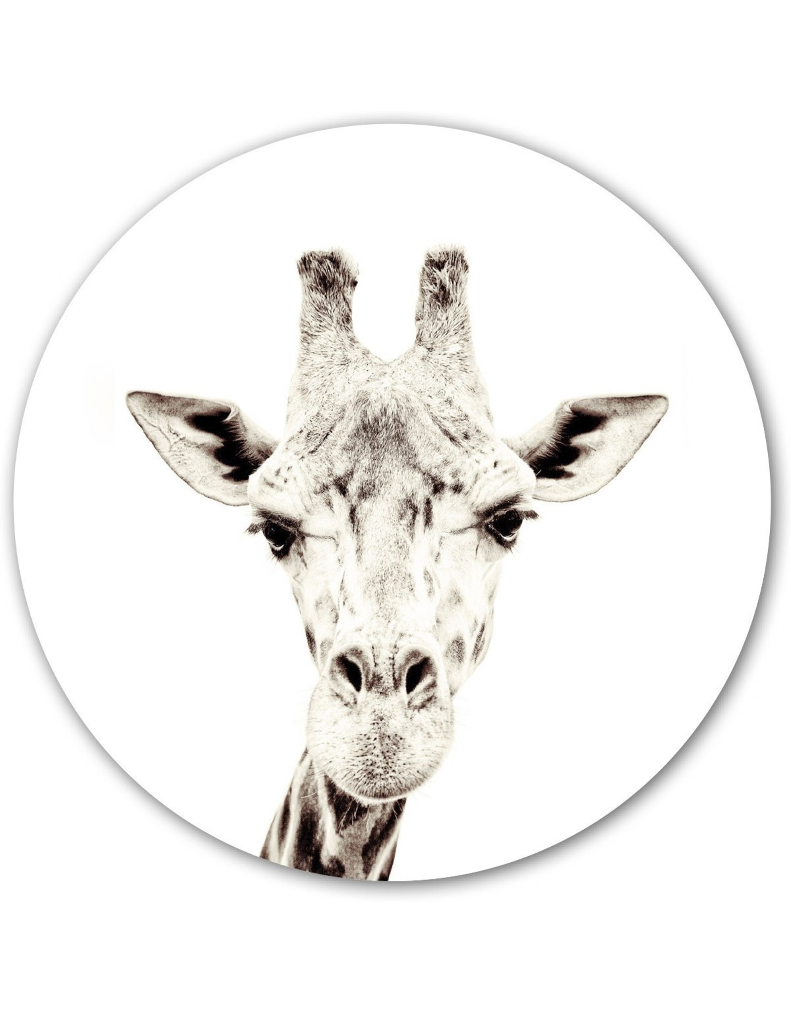 Magneetsticker giraf dia 60cm