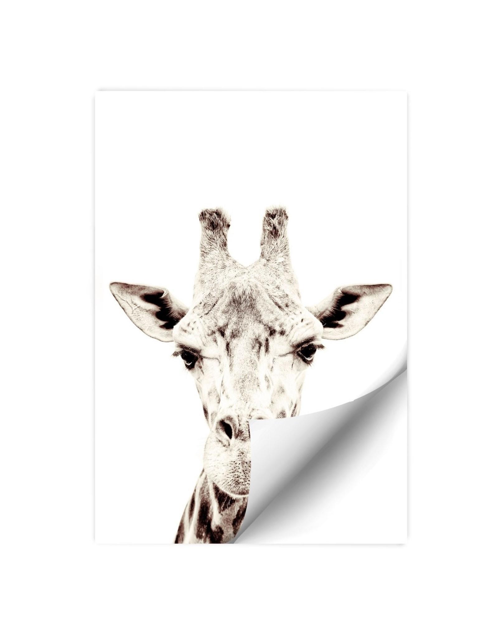 Magneetsticker giraf 60 x 91,5 cm