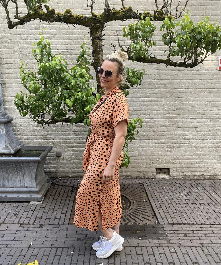 Catwalk Junkie Catwalk Junkie Dress Sunny Spots - Pheasant