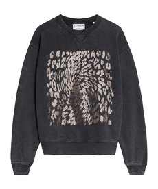 Catwalk Junkie Sweater Leopard Swirl - Dark Grey