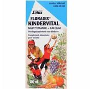 Floradix Floradix Kindervitalus 500 ml