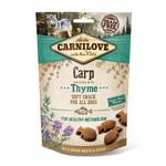 Soft snack Carp