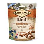 Crunchy snack Ostrich