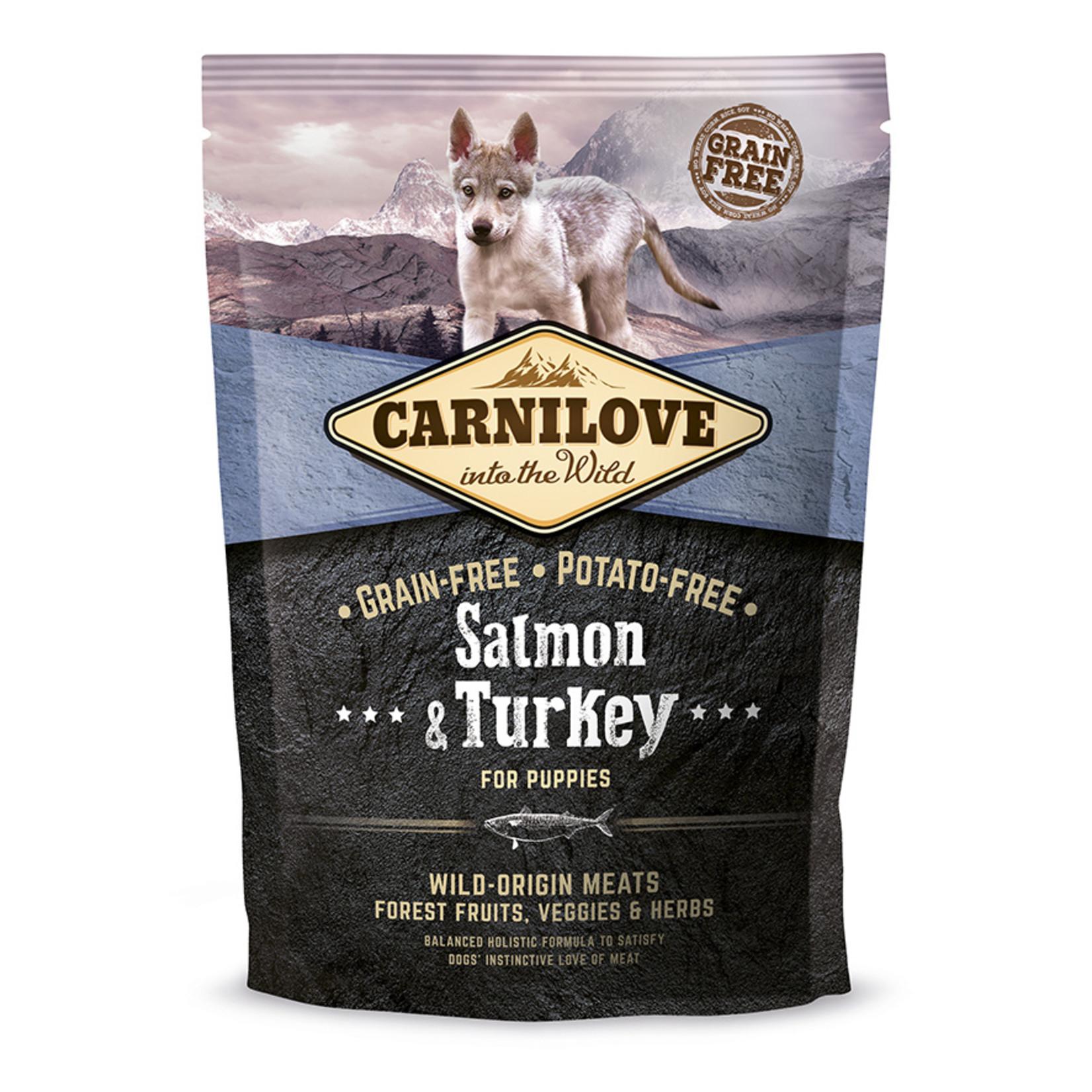 Carnilove Salmon & turkey puppies