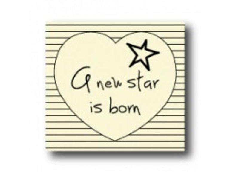 WKG A new star is born