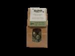 Blossombs Blossombs Kraft Bag 25 - Green