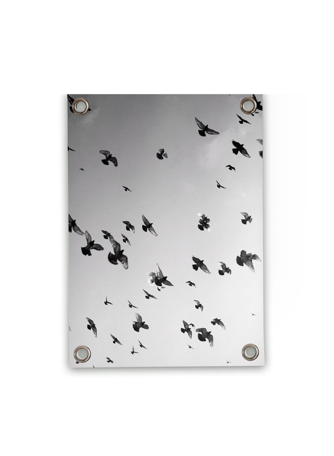 Tuinposter Vogels zwart wit 50x70cm