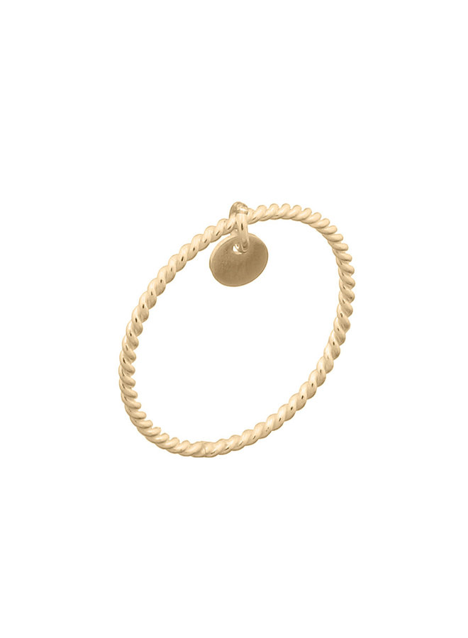 Ring goud charm S/16 mm