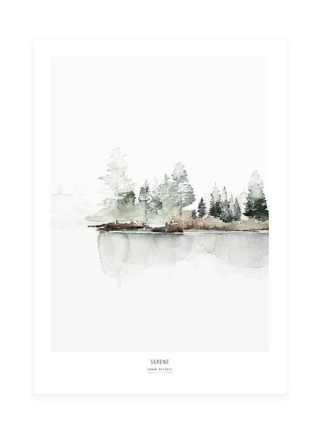 Serene | 50 x 70 cm
