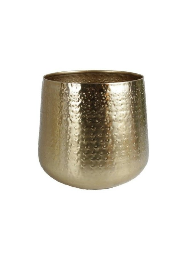 Karakter planter gold L