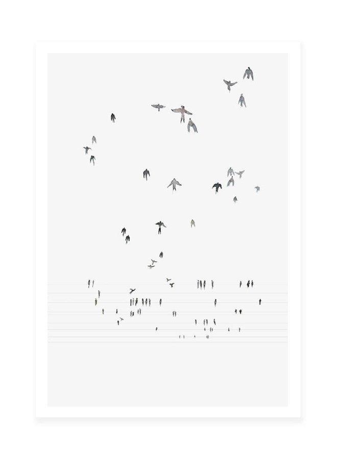 Swallows 50 x 70 cm zonder lijst