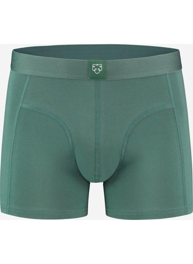 Bauke  green