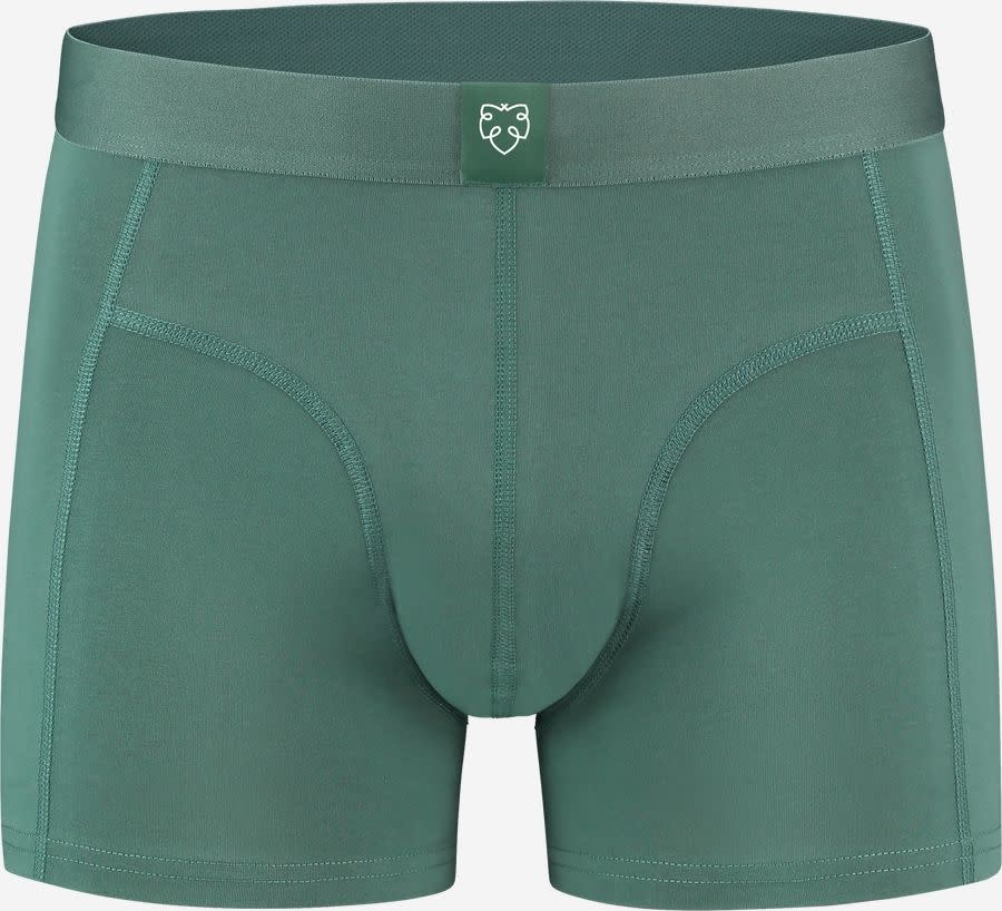 Bauke  green-1