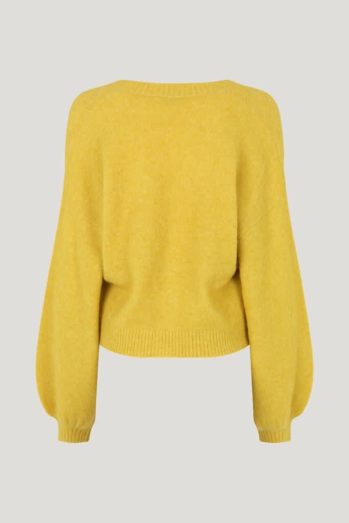 Chasmeen yellow-2