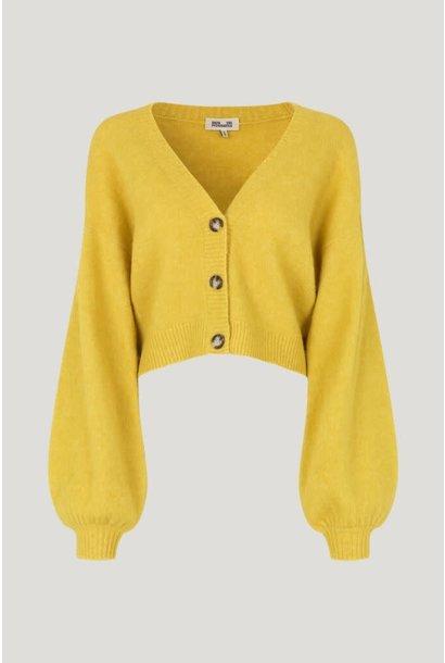 Chasmeen yellow