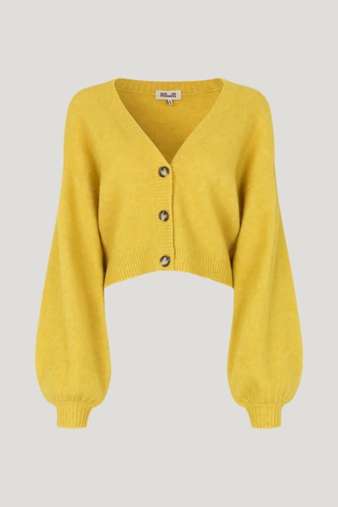 Chasmeen yellow-1