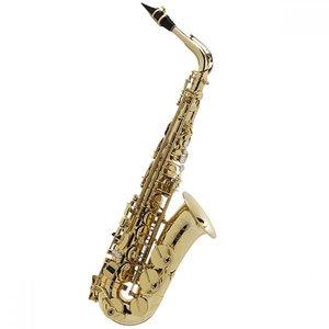 Selmer Paris Selmer Paris Seles Axos Alto Saxophone