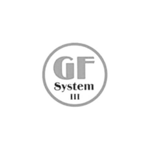 GF-System