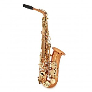 Conn-Selmer Conn-Selmer 'Avant' DAS200 Alto Saxophone - Bronze