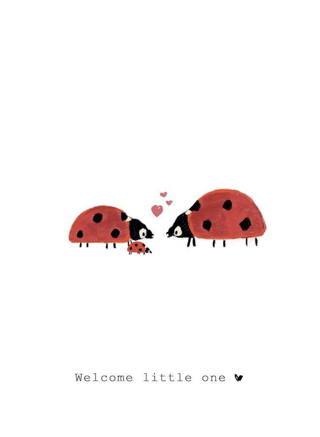 Welcome little one - lieveheersbeestjes